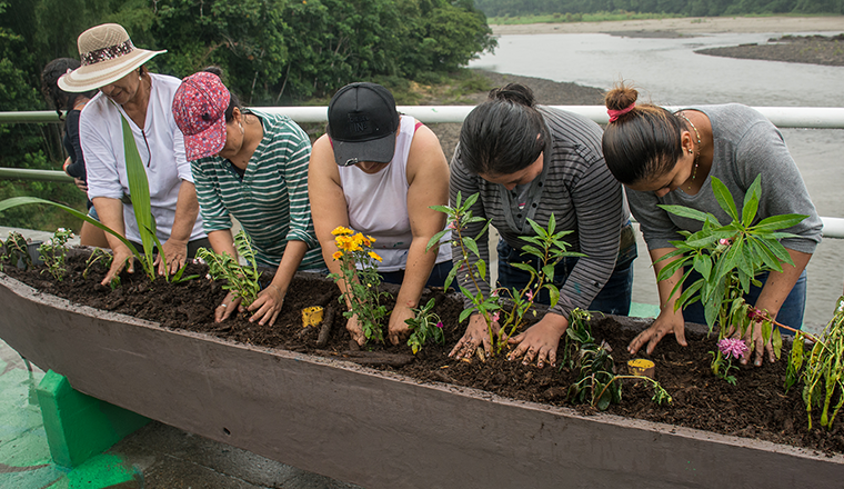 Women planting flowers in Colombia / seeds of peace