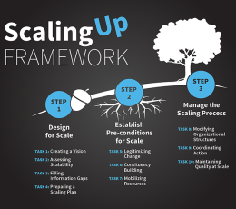 Infographic - Larry Cooley's Scaling Up Framework