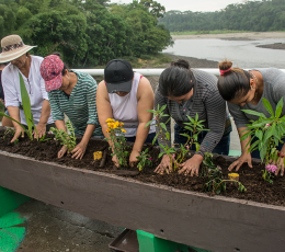 Women planting flowers in Colombia